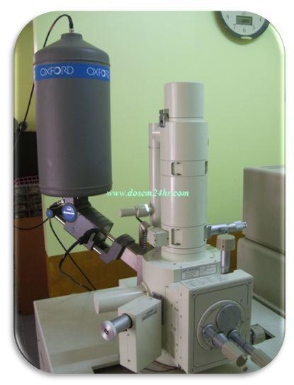 จองคิวใช้เครื่อง จุลทรรศน์อิเล็กตรอนไมโครสโคป