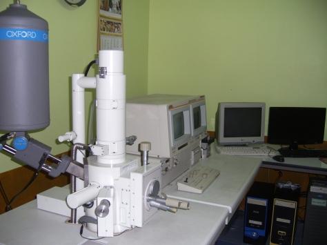 SEM Services บริการกล้องจุลทรรศน์อิเล็กตรอนไมโครสโคป