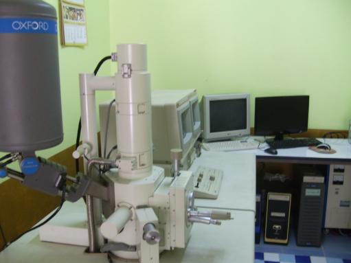 กล้องจุลทรรศน์อิเล็กตรอนไมโครสโคป แบบส่องกราด
